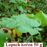Lopuch kořen pudr 50 g